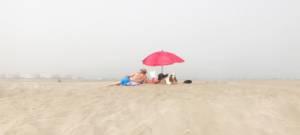 Un couple et son chien sont assis sur la plage en regardant la ville