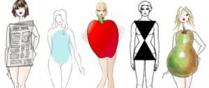 Visuel avec les différents types de morphologies