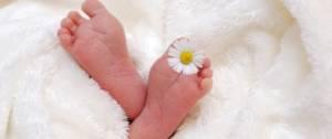 Pied de bébé, avec une marguerite entre les orteils du pied droit