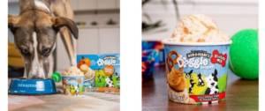 Chien mangeant une crème glacée pour les chiens de Ben & Jerry's