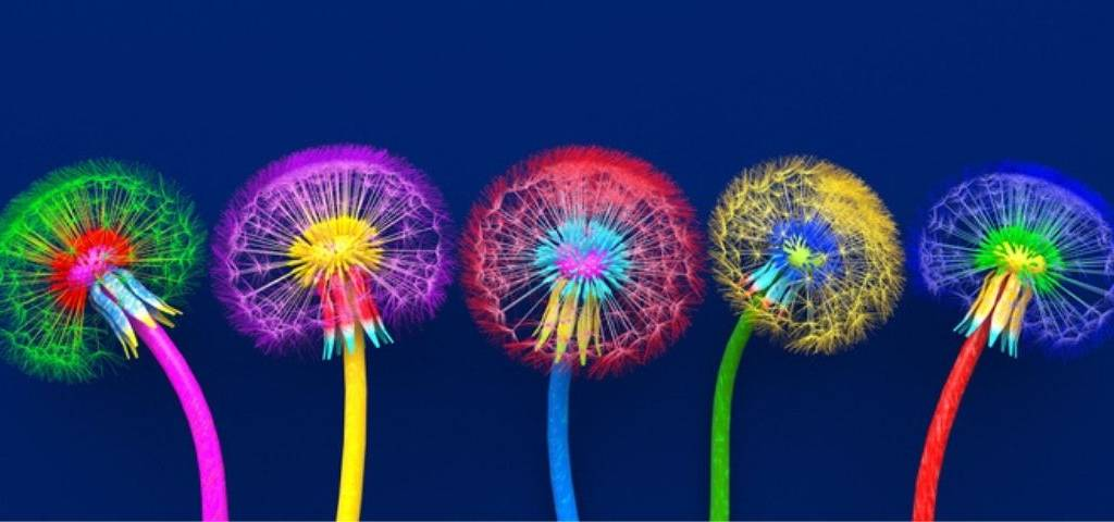 Quatre fleurs