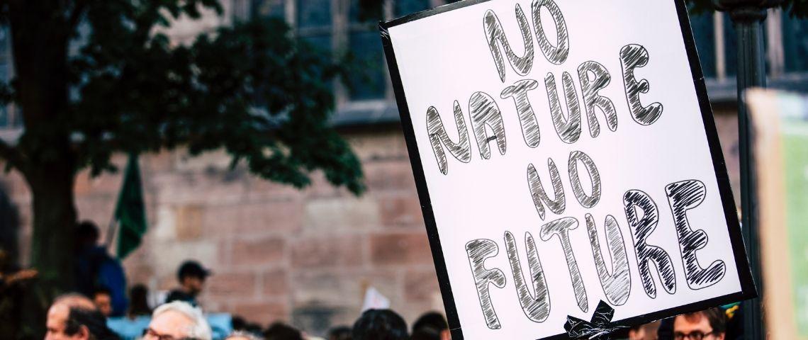 Pancarte :  - No nature, no future -