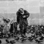 SDF entouré d'oiseaux