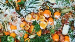 Fruits et légumes dans une poubelle