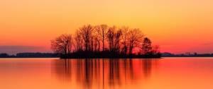 Des arbres et un lac