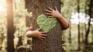 Main d'enfant serrant un tronc d'arbre, avec un coeur de mousse